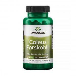 Diet Food Bio granola owocowa 200g